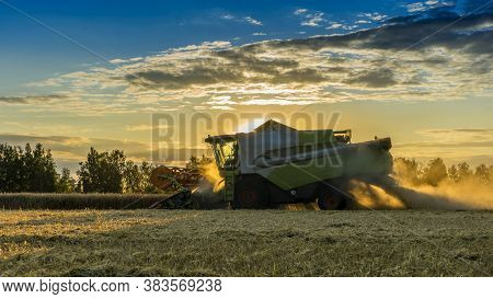 Combine Harvester Agricultural Machine Harvesting Golden Ripe Wheat Fields At Sunset. Agriculture