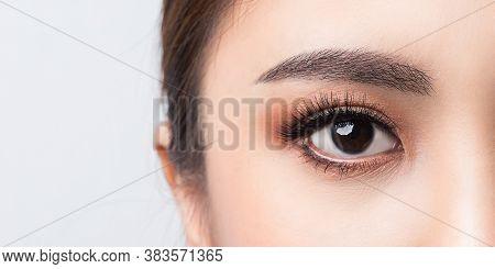 Asian Female Eye With Extreme Long False Eyelashes. Eyelash Extensions. Makeup, Cosmetics, Close Up