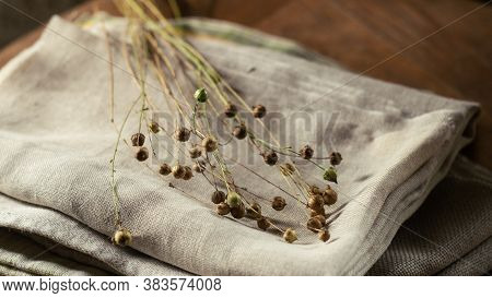Bunch Of Dry Flax Plants On Linen Cloth