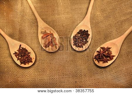 Indian Spices In A Ladle
