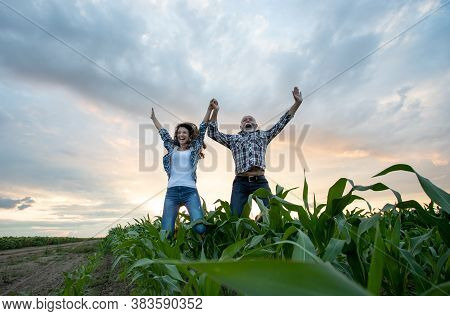 Mature Farmer And Young Woman Jumping In Corn Field
