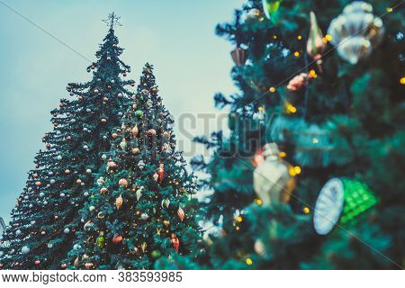 Christmas Tree On Evening Street. Low Angle Of Coniferous Tree With Traditional Christmas Decoration