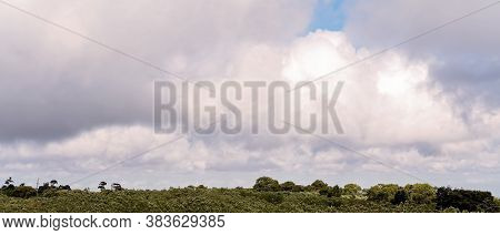 A Cloudy Sky Over Bushland On A Windy Day In The Country