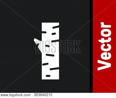 White Birch Tree Icon Isolated On Black Background. Vector