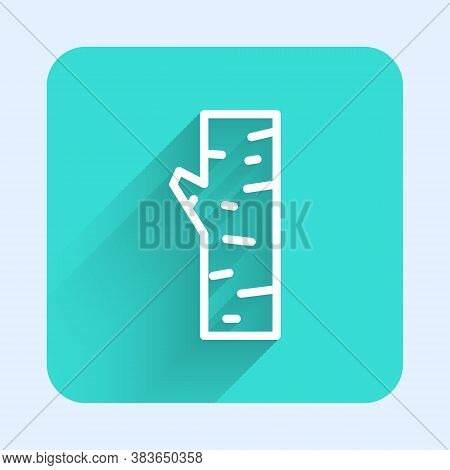 White Line Birch Tree Icon Isolated With Long Shadow. Green Square Button. Vector