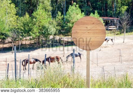 Empty Wooden Signboard On The Horse Farm. Horse Trail Sign Post Or Beware Sign. Horses Eating Hay On