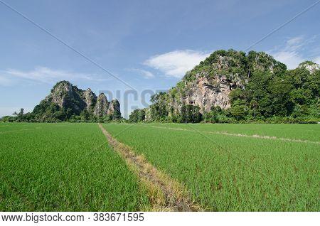 Path To Limestone Hill At Paddy Field