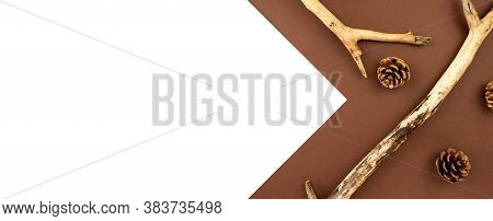 Wooden Branches With Fir Cones Creative Flat Lay On Brown And White Background Top View Copy Space.
