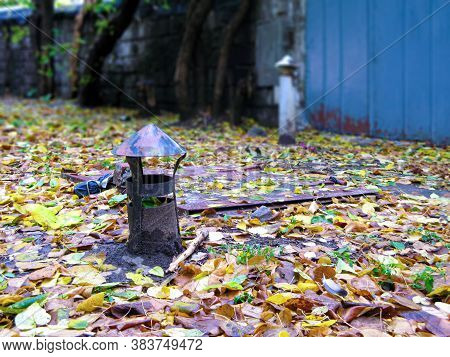 Ventilation Pipe And Door Of An Old Underground Basement In Fallen Tree Leaves In Autumn. These Cell