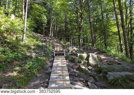 Hand Made Wooden  Walk Bridge For Hikers In Forest Mountains. Skolivski Beskydy,  Ukrainian Carpathi