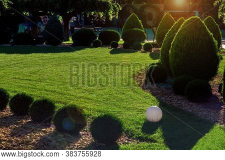 Clipped Thuja Bushes With Yellow Stone Mulching On A Green Mowed Lawn With Sphere Ground Lantern In