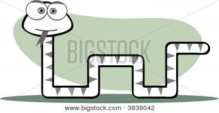 方形动物 bw 蛇