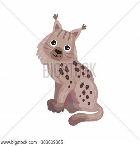 Grey Lynx With Tufts On Ears As Carnivore Forest Animal Vector Illustration
