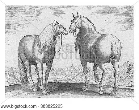 Stallion and mare from Rome, anonymous, after Hieronymus Wierix, after Jan van der Straet, 1624 - before 1648 A Roman mare and stallion. In the background the city of Rome, vintage engraving.