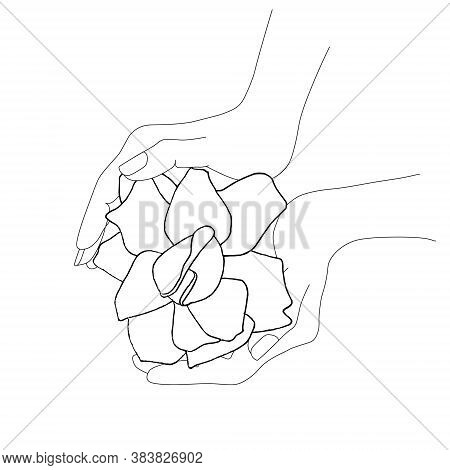 Rose In Two Hands Top View Hand Drawn Sketch Monochrome Art Design Elements Stock Vector Illustratio