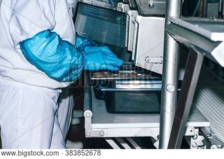 Food Industry Detail With Poultry Meat Processing.factory For The Production Of Chicken Meat.technol