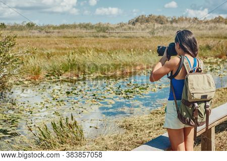 Florida wetlands walking tour woman tourist taking photo with camera of wildlife animal. Bird watching, alligators, fish in the marsh mangrove of the Everglades, Keys, USA.