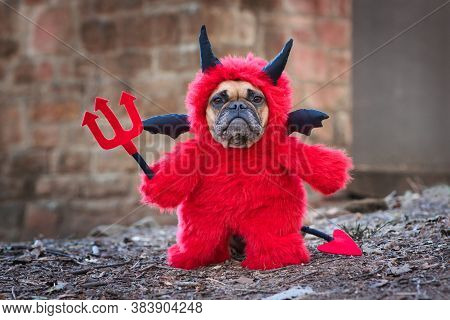 French Buldog Dog With Red Devil Costum Wearing A Fluffy Full Body Suit With Fake Arms Holding Pitch