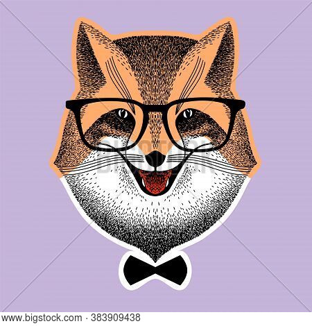 Portrait Of A Fox In Glasses. Fox With Bow-tie. Fox Hipster Style. Stylized Vector Illustration Of H
