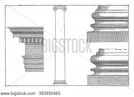 Ionic column, main frame and bases, Hendrick Hondius (I), after Hans Vredeman de Vries, after Paul Vredeman de Vries, 1620 Ionic column, main frame and two bases, vintage engraving.