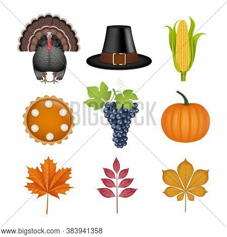 Set Of Thanksgiving Elements. Isolated Turkey, Pilgrim Hat, Corn Cob, Pumpkin Pie, Grapes, Pumpkin A