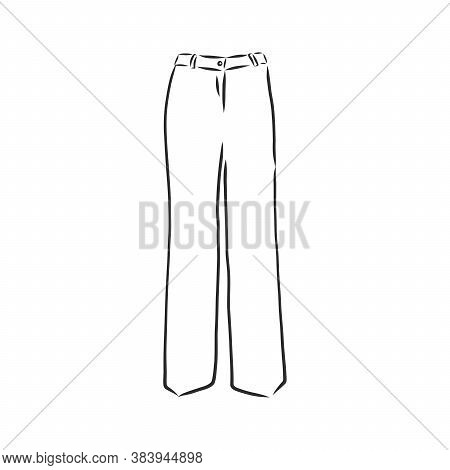 Technical Sketch Of Trousers, Classic Trousers, Vector Sketch Illustration