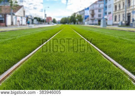 Green Track. Grass Covered Tramway Track. Greenery In The City. Habitable Zone Reduce Urban Heat. Is