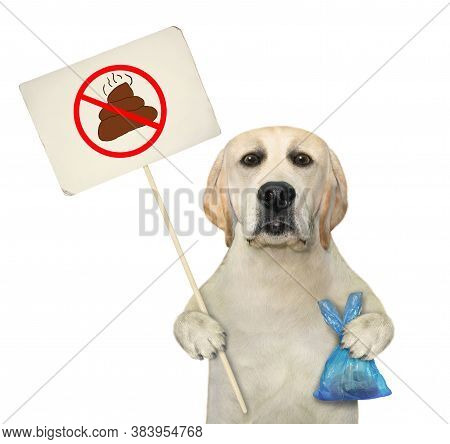 A Dog Holds A Blue Plastic Bag With Poop And A Prohibition Sign That Says Clean Up After Pets. White