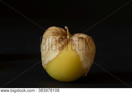 Unwashed Yellow Tomatillo On Black Background, Viewed From Dinner Angle- California Produce Concept