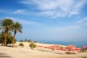 Ein Gedi oase at the Dead Sea. Israel poster