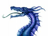 Illustration of a fierce blue dragon on a white background poster