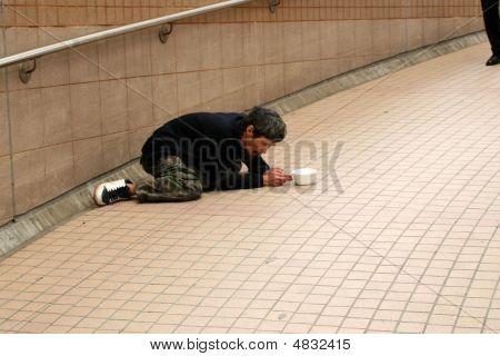 Street Beggar