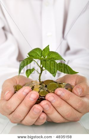 Good Investment And Money Making Concept