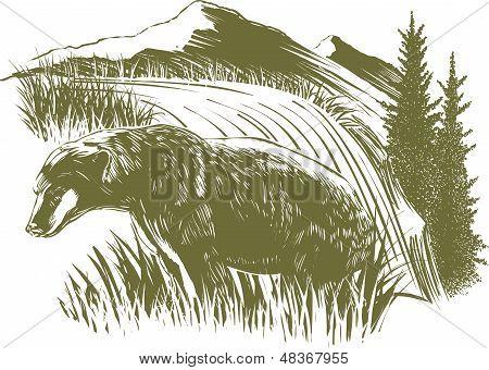 Woodcut Bear Scene
