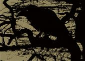Vector illustration of the silhouette of a raven in grunge style poster
