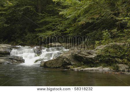 Rapids on Laurel creek