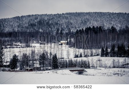 Wooden cottage in winter forest, Central Finland