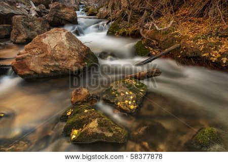 Autumn Leafs On Rocks And Water