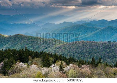 Southern Appalachian Mountain Spring Seasonal Scenic
