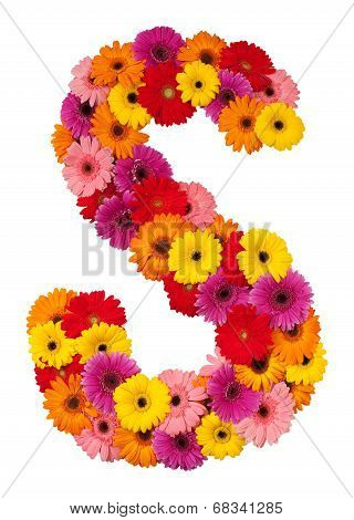 Letter S - Flower Alphabet Isolated On White