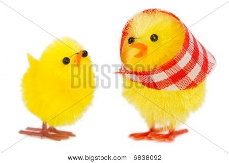mommy chick and baby chick isolated on white background poster