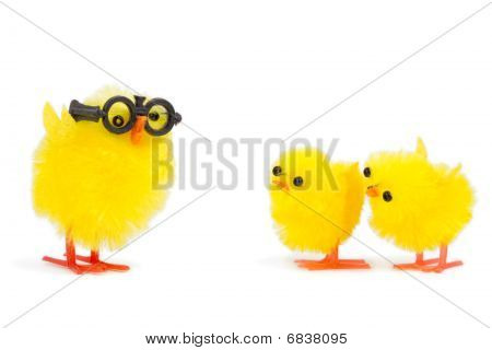 Two Baby Chicks Looking At Funny Older Brother