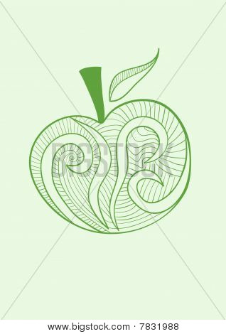 Vector stylized  illustration of apple