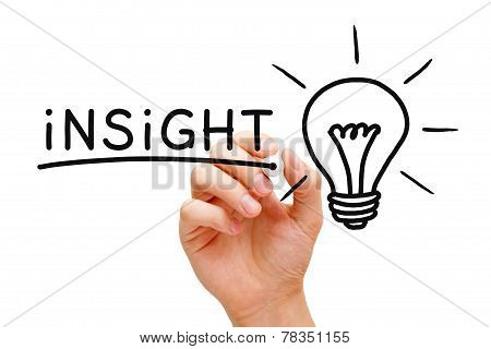 Insight Light Bulb Concept