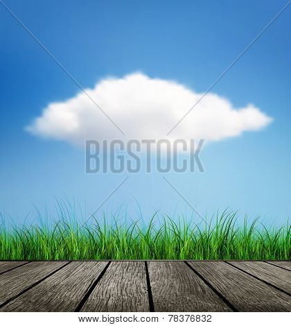 Wooden Floor, Grass And Cloud