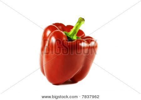 red pepper isolated