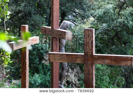 Three Crucifixes In Nature