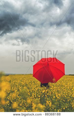 Person With Red Umbrella Standing In Oilseed Rapeseed Agricultural Field