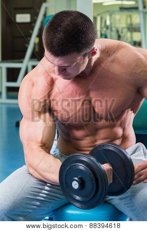 Strength training with dumbbells. Male bodybuilder train in the gym. Strength, power - the concept of individual sports. Arm muscles, triceps, biceps. poster
