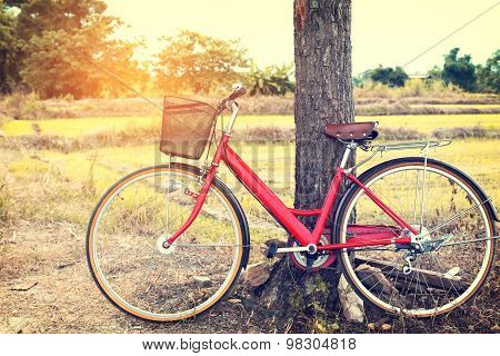 Landscape rustic with vintage reto red bicycle